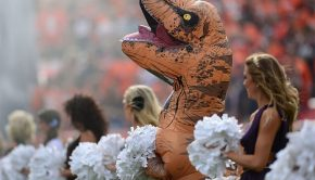 denver-broncos-cheerleader-t-rex